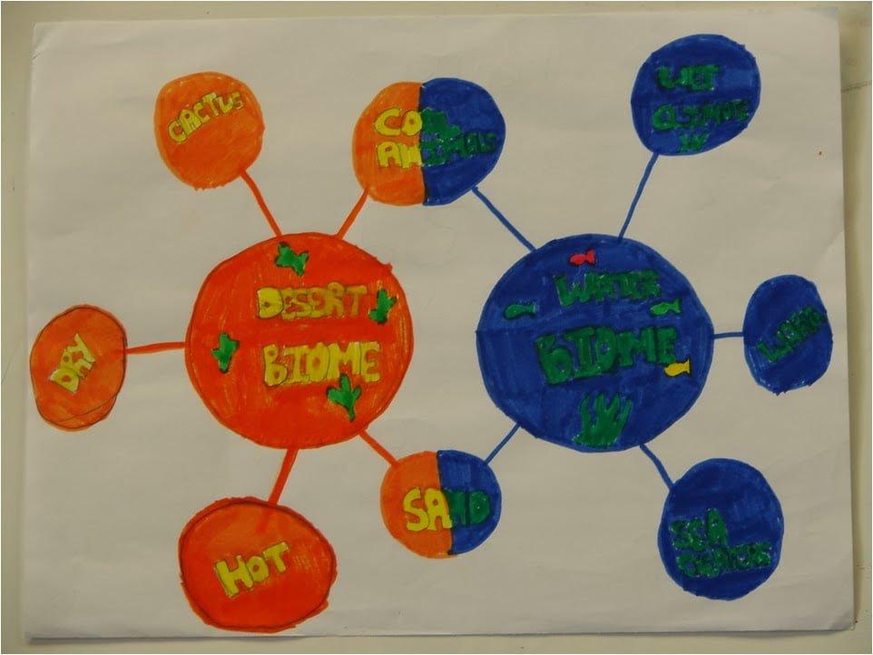 iThink Double bubble map peta Buih Berganda